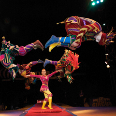 Image for - Moscow State Circus at Civic Hall