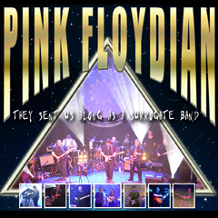 Image for - Pink Floydian at The Slade Rooms
