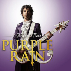 Image for -  Purple Rain - A Tribute To Prince... at Wulfrun Hall
